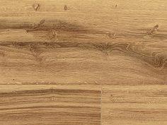 Gazelle Oak