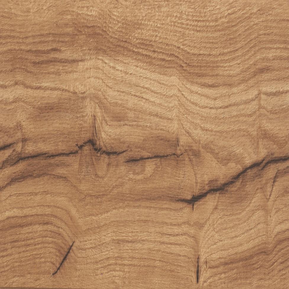 Umbro Oak